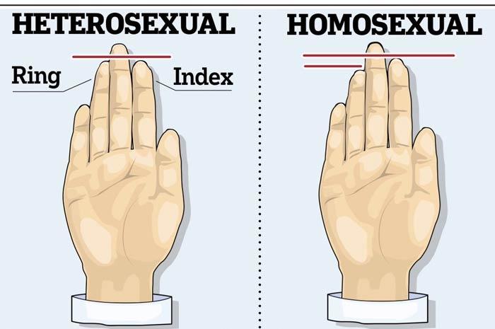 La conformazione delle dita rivela se sei gay