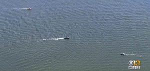 Maeve Kennedy dispersa in mare insieme al figlioletto