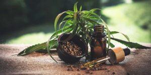 Olio di CBD ritrovato naturale per la cura di moltissimi disturbi